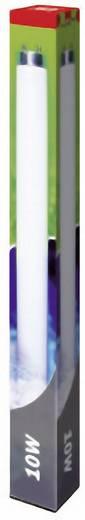 Swissinno UV cső T8, 10 W-os, az UV rovarcsapdákhoz TUBE_T8-10W UVA fénycső 10 W
