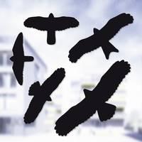 Ablakra ragasztható madár matrica készlet, 5 részes, Swissinno 1 705 001 (1 705 001) Swissinno