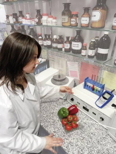 Greisinger GMH 2710 digitális beszúró hőmérő, -200 - +200 °C, HACCP