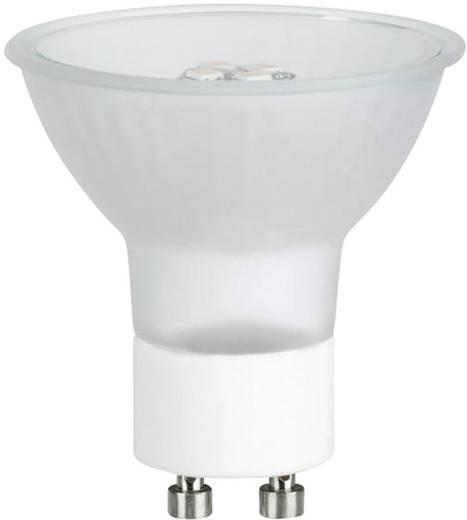 LED Paulmann 230 V GZ10 3.5 W Melegfehér, tartalom: 1 db