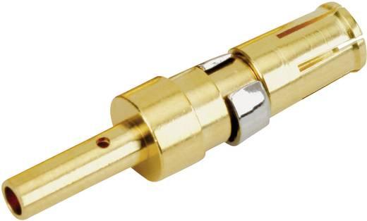 Nagyáramú érintkező, aranyozott nikkel, 30 A, Conec 132C11039X