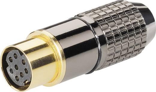 Miniatűr DIN kerek csatlakozó Alj, egyenes pólusszám: 8 BKL Electronic 0204118 1 db