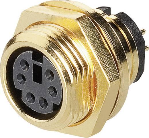Miniatűr DIN kerek csatlakozó Alj, beépíthető, függőleges pólusszám: 4 BKL Electronic 0202124 1 db
