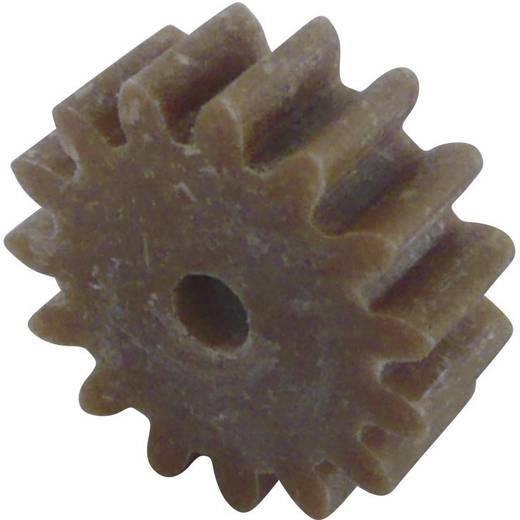 Fogaskerék fa / műanyag 1-es modul 15, Modelcraft 330119