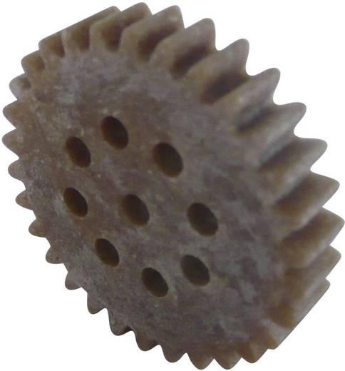 Fogaskerék fa / műanyag 1-es modul 30, Modelcraft 330139