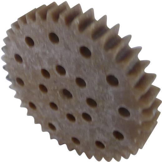 Fogaskerék fa / műanyag 1-es modul 40, Modelcraft 330149