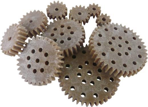 Fogaskerék fa / műanyag 1-es modul 10, 15, 20, 30, 40, Modelcraft 330209