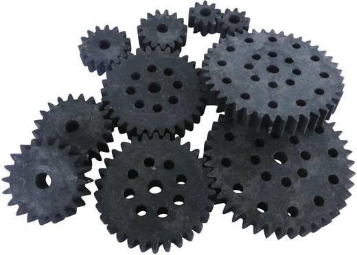 Fogaskerék fa / műanyag 1-es modul 10, 15, 20, 30, 40, Modelcraft 330219