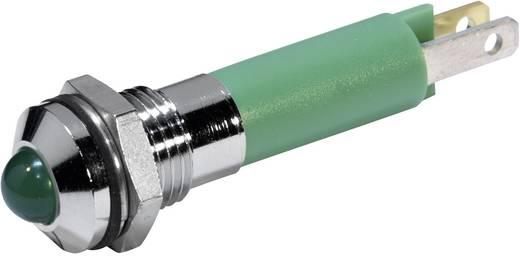 LED-es jelzőlámpa Zöld 12 V/DC 20 mA CML 19040251
