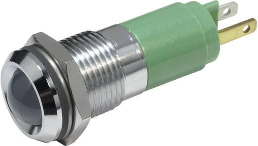LED-es jelzőlámpa Zöld 24 V/DC 20 mA CML 19210351