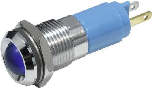 LED-es jelzőlámpa Kék 230 V/AC 3 mA CML 19350237