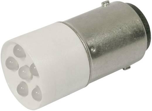 LED lámpa BA15d Hidegfehér 24 V/DC, 24 V/AC 2400 mcd CML