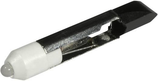 LED lámpa T6.8 Hidegfehér 12 V/DC, 12 V/AC 900 mcd CML