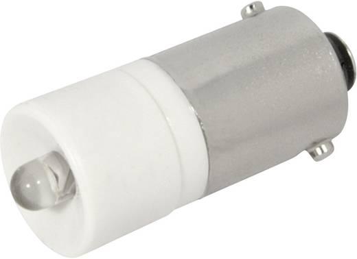 LED lámpa BA9s Melegfehér 12 V/DC, 12 V/AC 1440 mcd CML