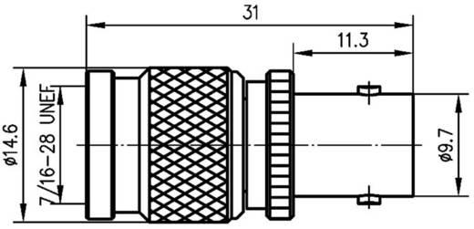 BNC adapter BNC aljzat - TNC dugó, Telegärtner, J01019B00001 db
