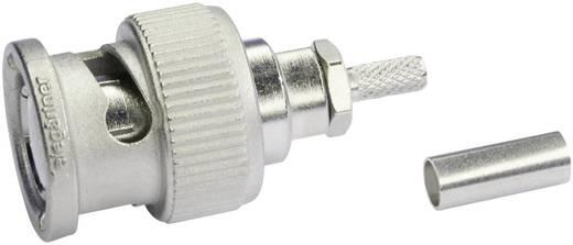 BNC csatlakozó Dugó, egyenes 50 Ω Telegärtner J01000A1294 1 db