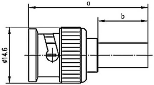 BNC csatlakozó Dugó, egyenes 50 Ω Telegärtner J01000A1255Y 1 db