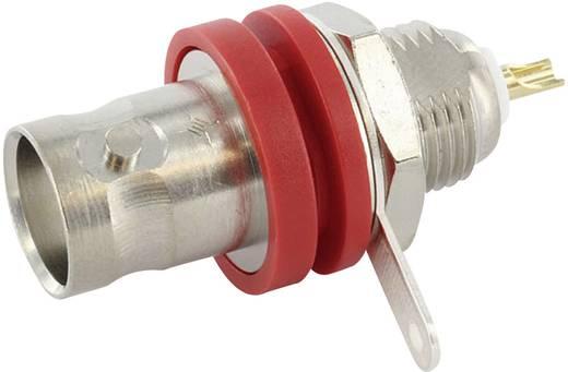 BNC csatlakozó Alj, beépíthető, függőleges 50 Ω Telegärtner J01001C1222 1 db