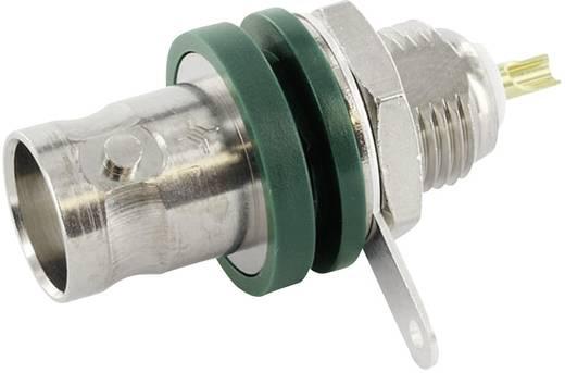 BNC csatlakozó Alj, beépíthető, függőleges 50 Ω Telegärtner J01001F1222 1 db