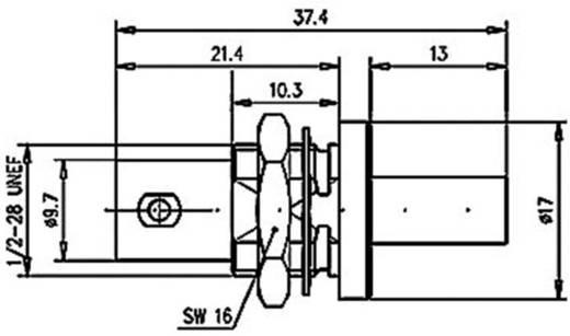 BNC csatlakozó Sasszé alj, egyenes 50 Ω Telegärtner J01001A0056 1 db
