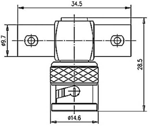 BNC adapter BNC dugó - BNC aljzat BNC aljzatTelegärtnerJ01005A12381 db