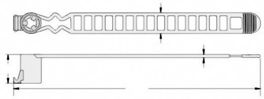 Kábelkötöző csavartartó résszel. (H x Sz x Ma) 120 x 10 x 1.5 mm MAT-120BK Szín: Fekete 1 db KSS