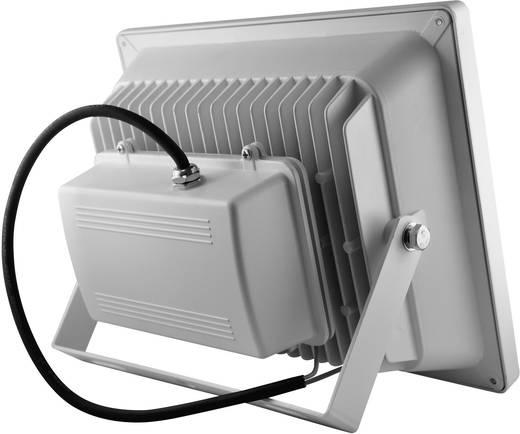 LED-es kültéri fényszóró 50 W Melegfehér DIO-FL50N-W Fehér