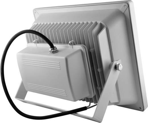 LED-es kültéri fényszóró 50 W Hidegfehér DIO-FL50W-W Fehér