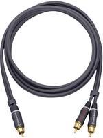 RCA Y elosztó kábel, 1x RCA dugó - 2x RCA dugó, 2 m, aranyozott, antracit, Oehlbach BOOOM 200 Oehlbach
