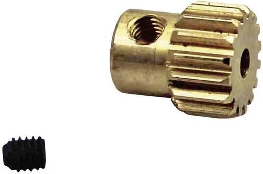 Reely TR-017Z Fogaskerék 16 fogú
