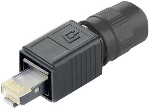 RJ45 dugókészlet változat 4 dugó, egyenes Pólus: 8P8C J80026A0013 fekete Telegärtner Tartalom: 1 db