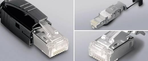 STX RJ45 dugó dugó, egyenes Pólus: 8P8C STX átlátszó Telegärtner J80026A0000