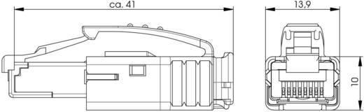 STX RJ45 moduláris csatlakozó dugó, egyenes, 8P8C, Telegärtner J80026A0001