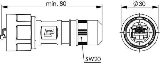 STX V1 RJ45 dugókészlet, műanyag, 1 dugó, egyenes Pólus: 8P8C fekete Telegärtner J80026A0009