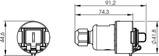 STX V6 RJ45 csatlakozóaljzat doboz változat, 6 csatlakozóaljzat, egyenes Pólus: 8P8C STX V6 élénkszürke Telegärtner