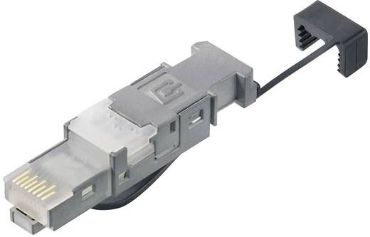 STX V6 RJ45 dugó dugó, egyenes Pólus: 8P8C STX V6 Telegärtner Tartalom: 1 db