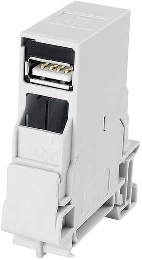 Sínre szerelhető USB csatlakozó aljzat, USB 2.0, világosszürke, Telegärtner J80023A0004