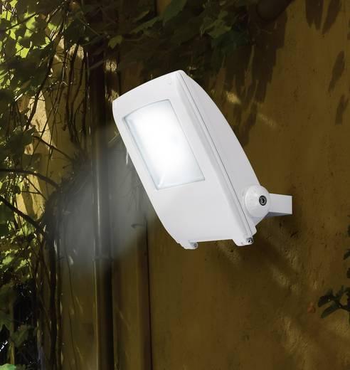 LED-es kültéri fényszóró 30 W hidegfehér, renkforce SPC30H2 KW fehér