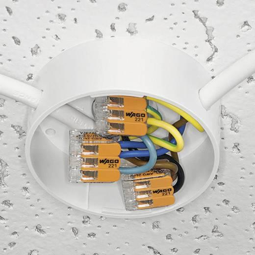Vezetékösszekötő hajlékony: 0.14-4 mm² merev: 0.2-4 mm² Pólusszám: 2 WAGO 221-412 1 db Átlátszó, Narancs