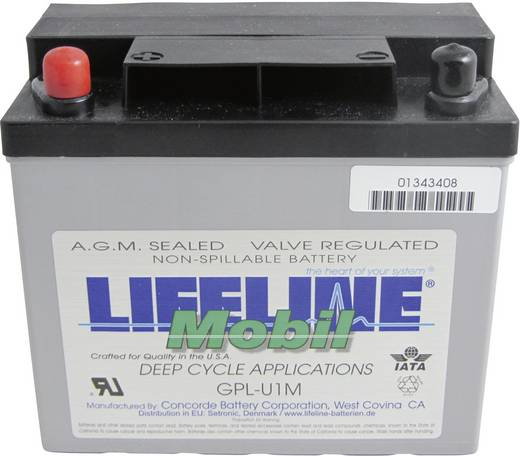 Ólomakku 12 V 33 Ah LifeLine GPLU1M 12V 33Ah GPLU1M Ólom-vlies (AGM) 196 x 175 x 132 mm Karbantartásmentes,Ciklusálló