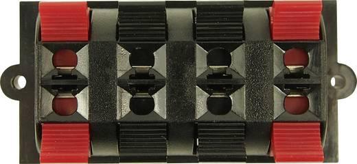 Hangszóró csatlakozó alj, beépíthető, függőleges, pólusszám: 4 Cliff FE6930