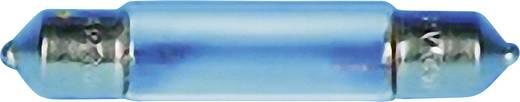 Szoffita lámpa 15 V 1.2 W 0.08 A, foglalat: S7, átlátszó, Barthelme