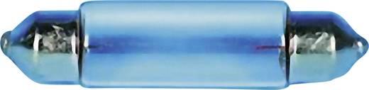Szoffita lámpa 12 V 3 W 0.25 A, S8, átlátszó, Barthelme 00381203