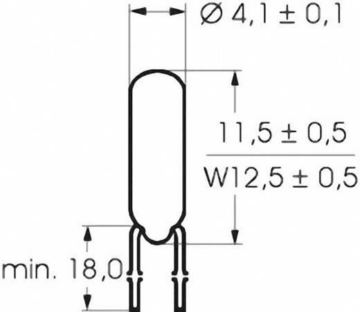 Mikro izzó 24 V 0.96 W, foglalat: T1 1/4, átlátszó, Barthelme