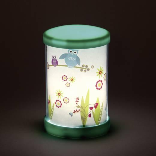LED-es éjszakai fény, kerek, baglyok, Brilliant G56047/72