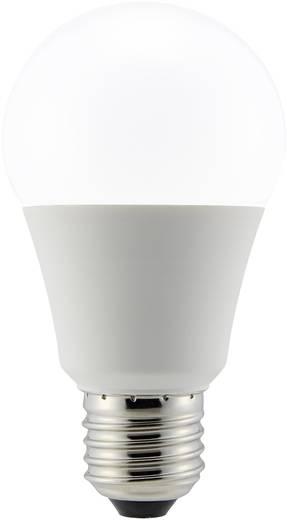 LED-es fényforrás, 110 mm 230 V E27 6.2 W = 40 W Melegfehér Renkforce