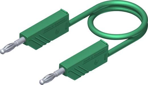 Mérőzsinór, mérővezeték 2db 4mm-es toldható banándugóval 2,5 mm² PVC, 1m zöld SKS Hirschmann CO MLN 100/2,5