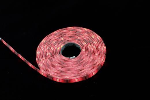RGB LED szalag készlet távirányítóval, 230 V, 500 cm, Renkforce 5MAC862W