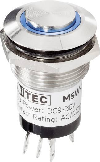 Beépíthető csengőgomb 24V/1A 22mm, nemesacél/fehér, 1 részes, renkforce 1227542