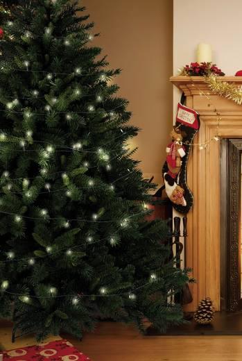 LED-es beltéri karácsonyi fényfüzér, 35 LED, hálózati, 1010 cm, Polarlite LLC-03-001